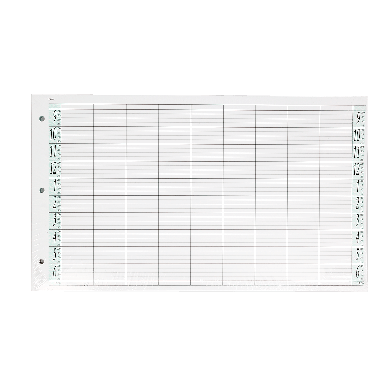 Agenda Salon Concepts Loose Leaf Refill 9 Coloumn 100 Sheets LL9/Z3