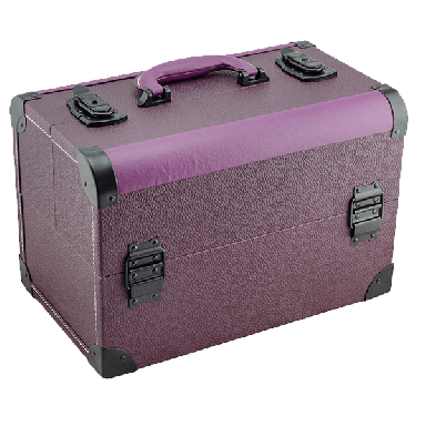DMI Nail and Beauty Case Purple