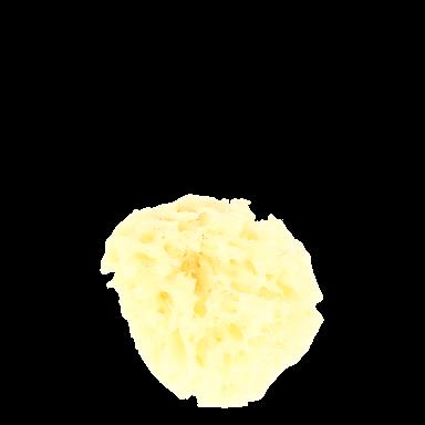 Hydrea Natural Premium Honeycomb Sponge