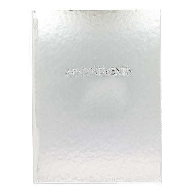 Quirepale 6 Assistant Appointment Books Premium Silver
